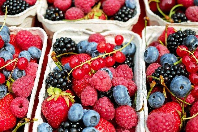 Savoir quand les fruits et les légumes déshydratés sont prêts